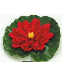 Nénuphar rouge 20 cm