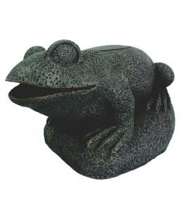 Filtre grenouille