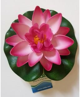 Lotus Rose 10cm