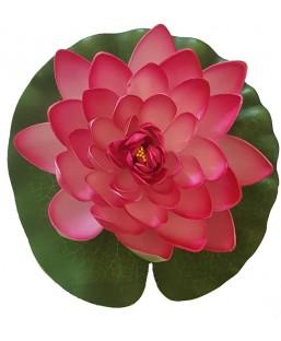 Lotus Rose 20cm