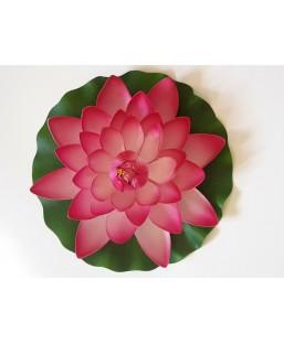 Lotus Rose 28cm