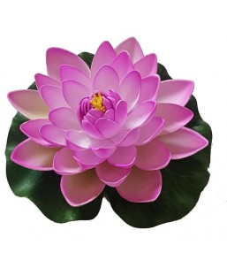 Lotus purple 17cm