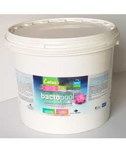 Bactopool 10kg 100M3