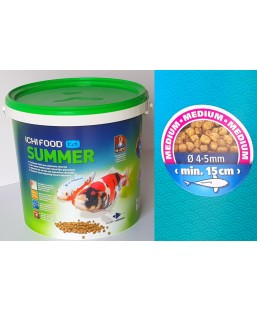 ICHI FOOD SUMMER 4KG MEDIUM