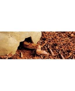 Exoterra Caverne Reptile Grand Modèle