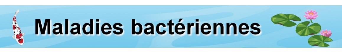 Maladie des trous, Pourriture des nageoires, Pourriture bactérienne de