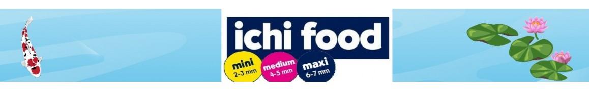 Nourriture poissons de bassin de jardin ICHI FOOD