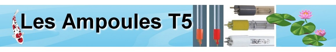 Ampoules T5 pour bassin de jardin