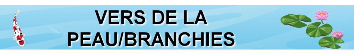 Traitez vos poissons de bassin contre les VERS DE LA PEAU/BRANCHIES