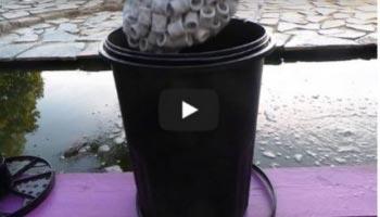 A quoi sert un filtre pour bassin de jardin?