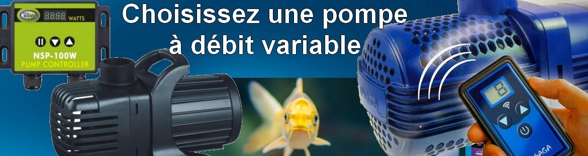 pompe de bassin variable